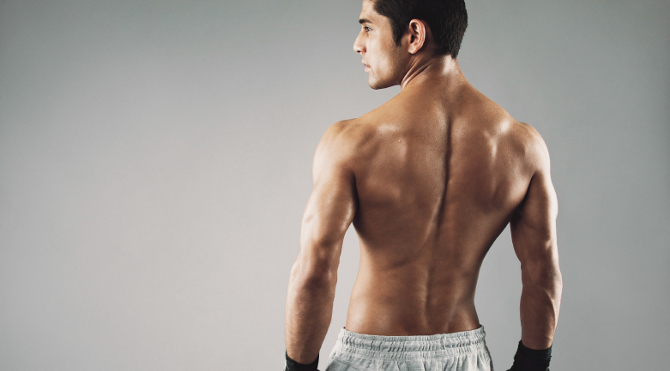 back muscle_000044635862_Small